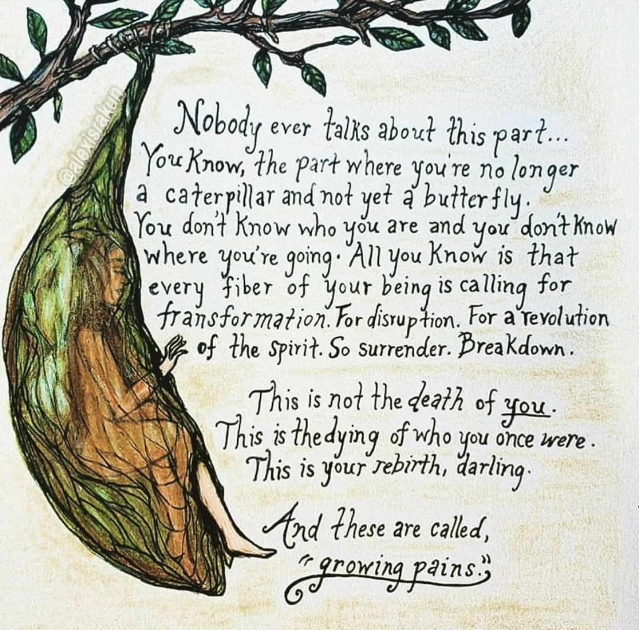 A hand-drawn image of a cocoon hanging from a branch. A woman is beginning to emerge from the cocoon. Text overlays the image: Nobody every talks about this part...You know, the part where you're no longer a catepillar and not yet a butterfly. You don't know who you are and you don't know where you're going. All you know is that every fiber of your being is calling for a transformation. For disruption. For a revolution of the spirit. So surrender. Breakdown. This is not the death of *you*. This is the dying of who you once were. This is your rebirth, darling. And these are called 'growing pains'.